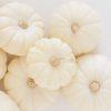 October favorites _ white pumpkins