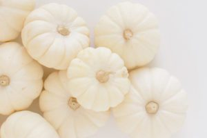 October favorites _ white pumpkins