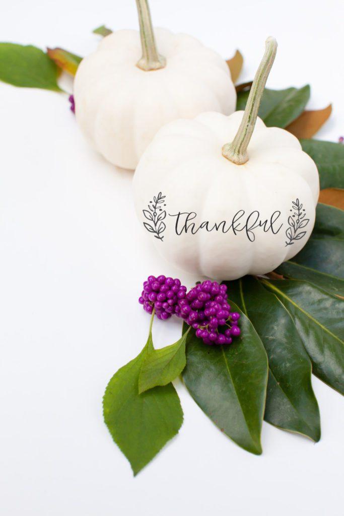 Thankful Pumpkin Tradition