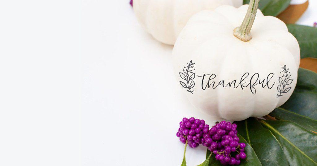 Thankful Pumpkin for Thanksgiving
