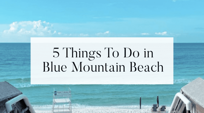 5 things to do in blue mountain beach